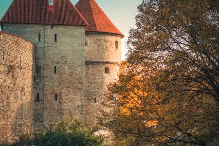 Państwo na E - Estonia