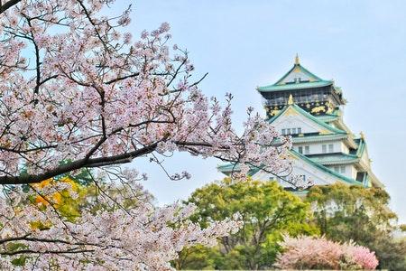 Państwo na J - Japonia