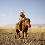 zawód na j - Jeździec konny