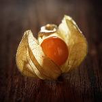 owoc na m miechunka