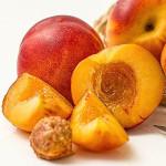 owoc na n nektarynka