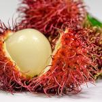 owoc na r rambutan