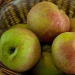 owoc na r reneta