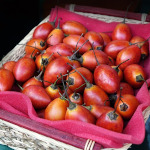 owoc na t tamarillo