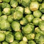 warzywo na b brukselka