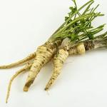 warzywo na c chrzan
