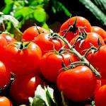 warzywo na p pomidor