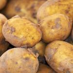 warzywo na z ziemniak